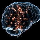 Reprogramming your brain